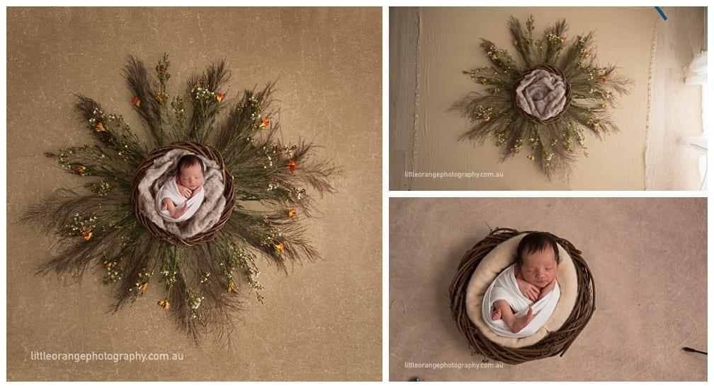 baby photos gold coast