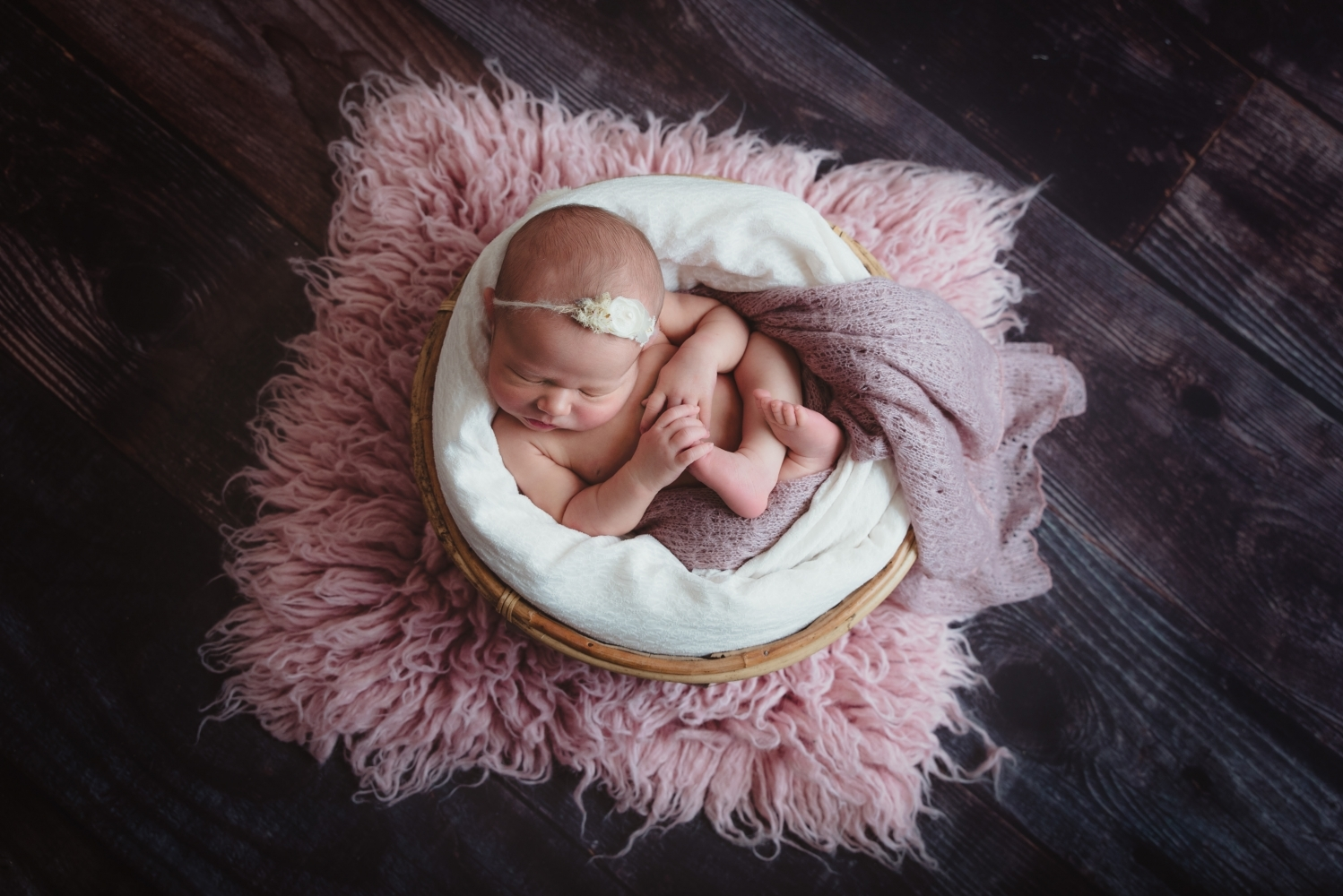 photography newborn baby